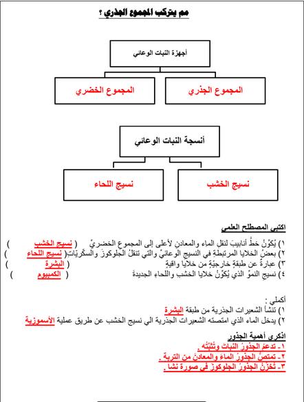 التقاويم اللاصفية علوم الصف الثامن الفصل الاول