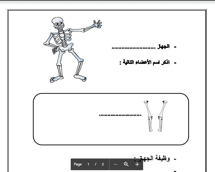 ورقة عمل علوم الصف الرابع الجهاز العظمي والعضلي الفصل الثاني