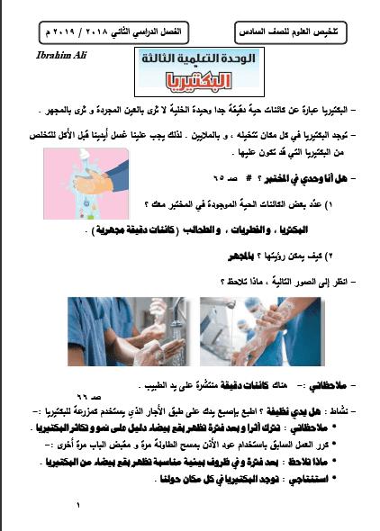 تلخيص علوم وحدة البكيريا الصف السادس الفصل الثاني إعداد إبراهيم علي 2018-2019