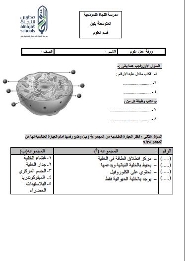 ورقة عمل 1 علوم للصف السادس الفصل الثاني مدرسة النجاة النموذجية المتوسطة