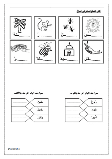 ورقة عمل 8 لغة عربية للصف الأول الفصل الثاني