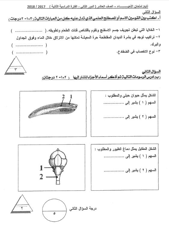 مذكرة امتحانات الاحيياء للصف العاشر