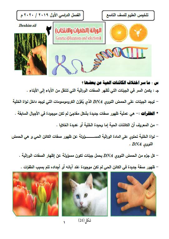 تلخيص علوم الطفرات الصف التاسع الفصل الأول إعداد ابراهيم علي